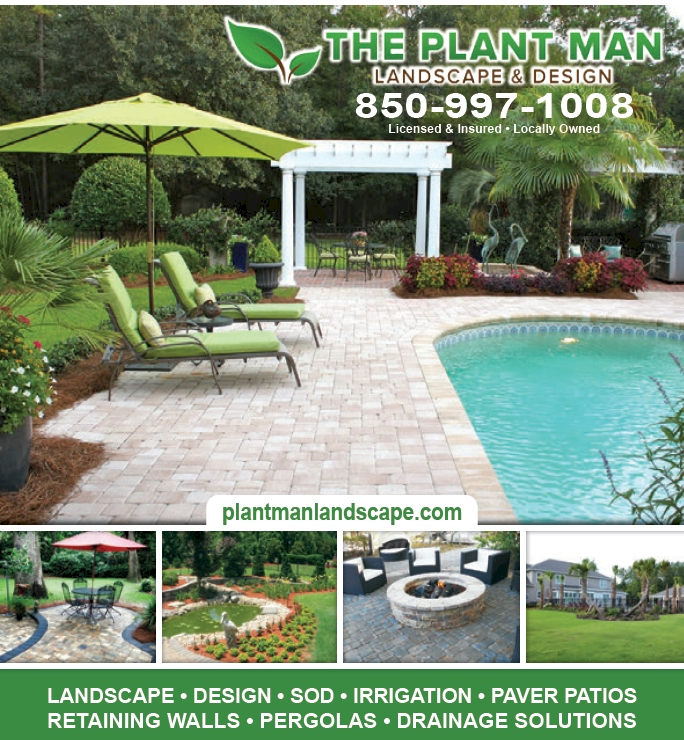 The Plant Man Landscape and Design Tallahassee